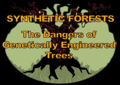 A Silent Forest, Synthetic Forests
